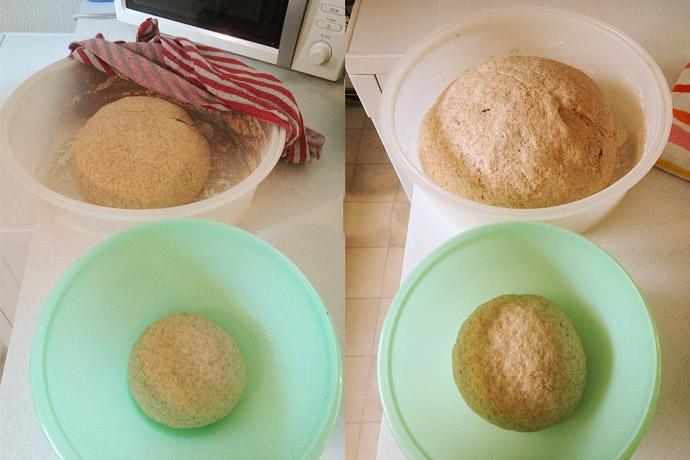 brood-rijzen