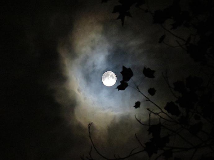 victoriaans-maanlicht-duisternis