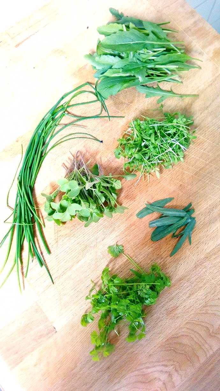 Verse kruiden, fin herbes.