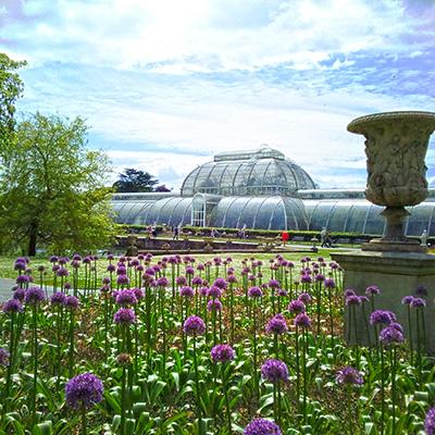 Kew Gardens victoriaanse kas palm house