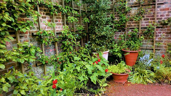 Kew Gardens Keukentuin small