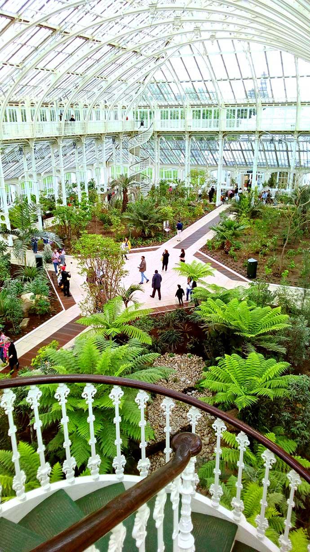 Kew Gardens Temperate House binnen small