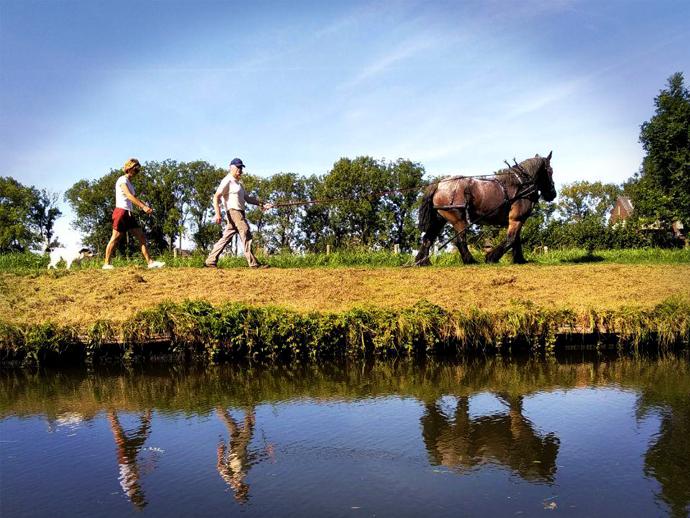 Foto van een werkpaard met twee begeleiders op een jaagpad langs de Hollandse IJssel, gezien vanaf een trekschuit.