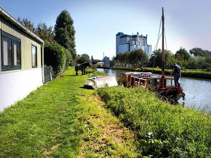 Foto van de oever van de Hollandse IJssel met een gerenoveerde trekschuit, met op de oever een werkpaard.